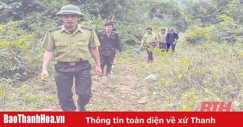 Phối hợp ngăn chặn buôn lậu lâm sản và bảo vệ rừng trên địa bàn các huyện miền núi