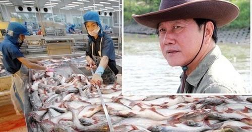 Vì sao cổ phiếu Thủy sản Hùng Vương bị hủy niêm yết bắt buộc?