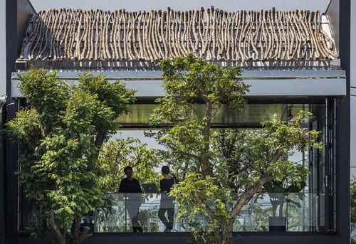 Mãn nhãn tòa nhà văn phòng khơi nguồn cảm hứng sáng tạo ở Huế