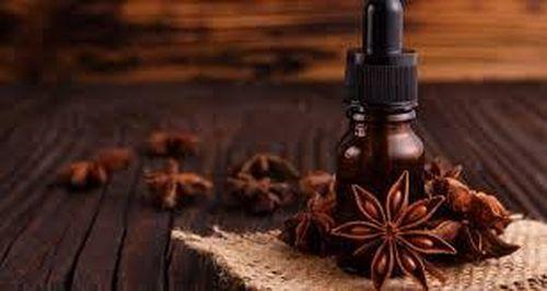 Ly trích tinh dầu từ quả đại hồi khô (Illicium verum)