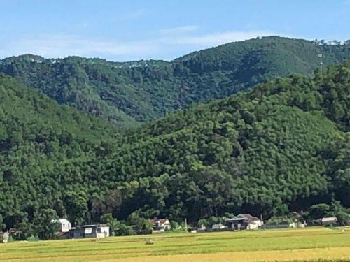 Cao tốc Bắc - Nam đoạn qua Diễn Châu xuyên núi Thần Vũ và có 2 cầu