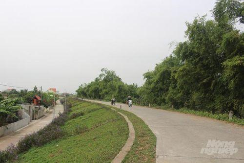 Nam Định xây dựng gần 20 km đê kiểu mẫu