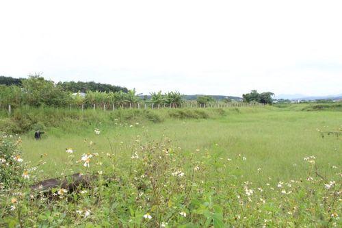 Huyện Đắk Hà – Kon Tum: Trung tâm giống thủy sản xây hơn 17 tỷ đồng để… cỏ mọc