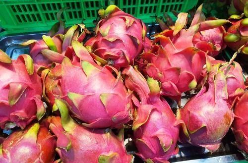 Dự báo xuất khẩu trái cây sẽ có nhiều tín hiệu khả quan