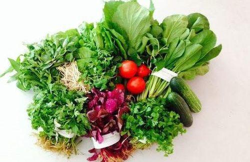 Phân biệt rau hữu cơ qua màu sắc