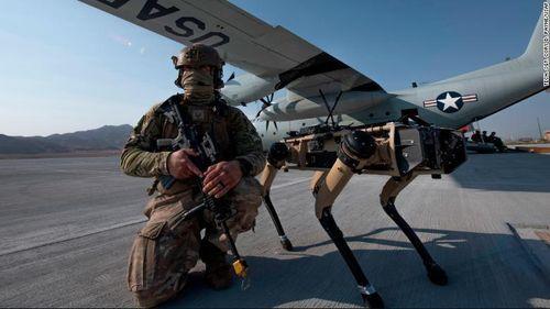 Chó robot tập trận không quân