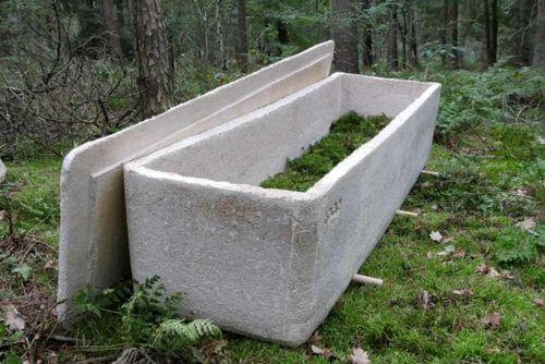 Đám tang đầu tiên dùng 'quan tài sống' làm bằng sợi nấm