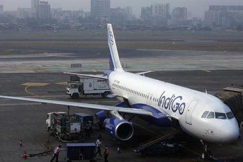 Hãng hàng không IndiGo của Ấn Độ không hy vọng có lãi tới năm 2022