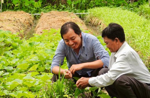 Ông chủ của những 'nhân viên' không lương: Đào tạo cò, ếch, nhái bắt côn trùng gây hại
