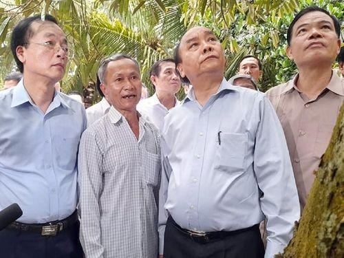 Thủ tướng khảo sát vùng chuyên canh sầu riêng của Tiền Giang