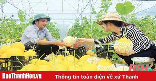 Bài 1: 'Luồng gió mới' phát triển sản xuất nông nghiệp