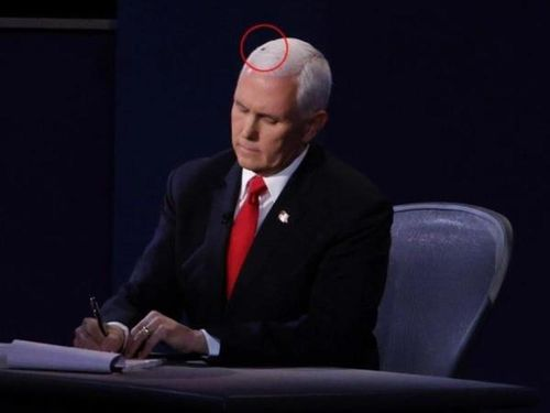 Thế giới dậy sóng vì 'ngôi sao ruồi đen' trên tóc ông Mike Pence
