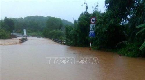 Bình Phước chủ động phòng chống, khắc phục hậu quả do mưa lũ, sạt lở đất
