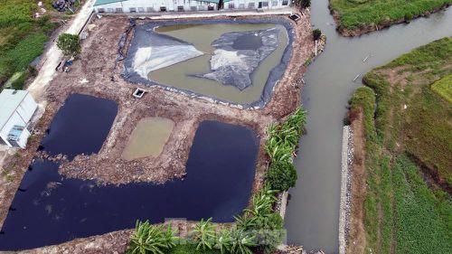 Cận cảnh nước thải trang trại lợn bủa vây khu dân cư ở Hải Phòng