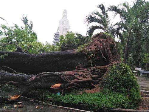 Quảng Nam : Nhiều chùa bị hư hại sau bão số 9