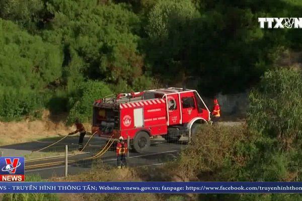 Cháy rừng tại Bồ Đào Nha, hàng trăm người phải sơ tán