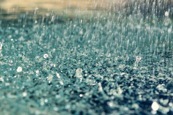 Mùi mưa