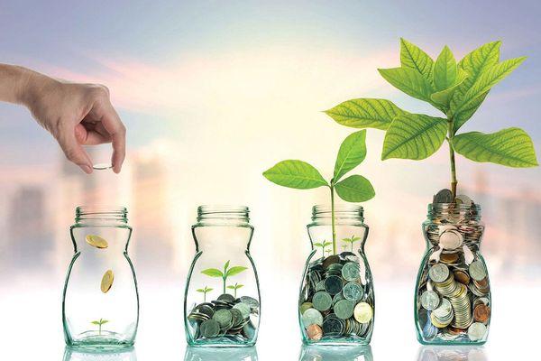 Sự trỗi dậy đáng kinh ngạc của ESG