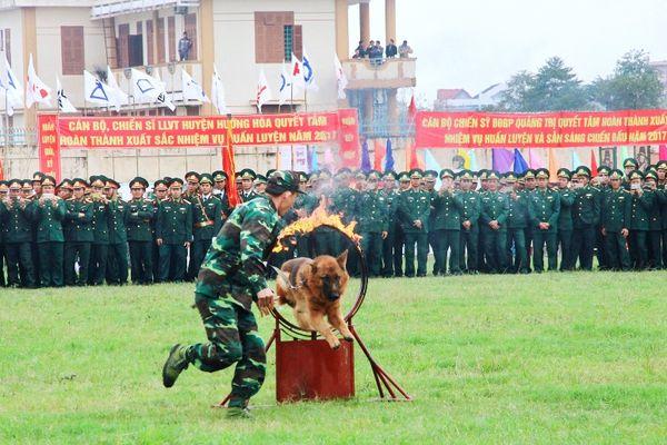Cuộc chiến chống ma túy qua biên giới Quảng Trị (Bài 3)