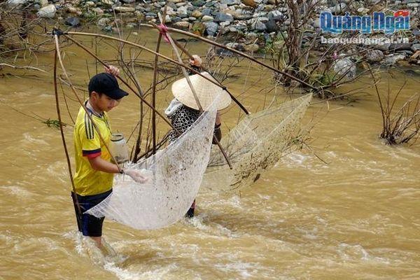 Băng dòng nước xiết 'săn' cá ngày mưa
