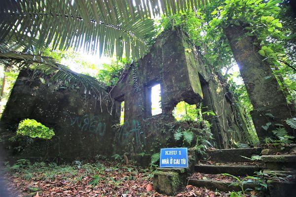 Kết nối phát triển du lịch Vườn Quốc gia Ba Vì