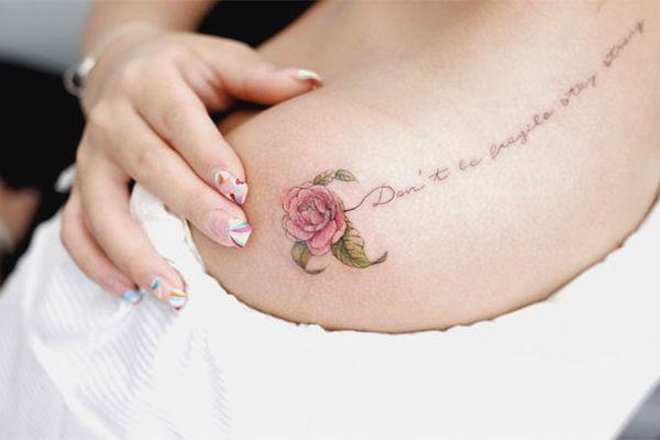 Bông hồng kiêu hãnh