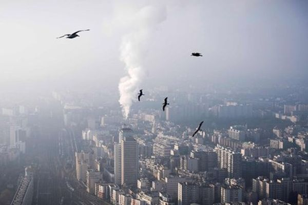 Biến đổi khí hậu: Lượng khí thải CO2 toàn cầu tăng kỷ lục