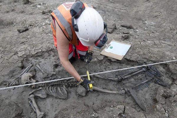 Phát hiện bộ xương bí ẩn 500 năm tuổi dưới cống nước ở Anh