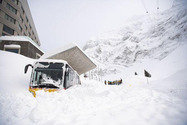 Thế giới bị phủ trắng bởi tuyết