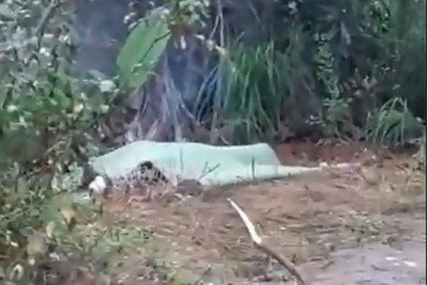 Điều tra nguyên nhân nam thanh niên tử vong tại vườn nhà