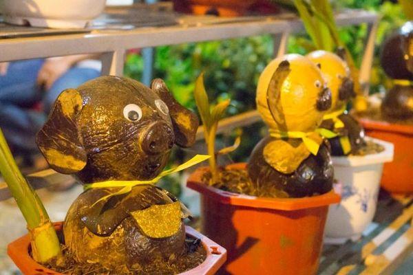 Độc đáo những chú heo chưng Tết làm từ dừa