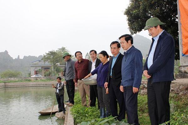 Đồng chí Trưởng ban Tuyên giáo Tỉnh ủy kiểm tra sản xuất đầu năm tại huyện Yên Khánh, Hoa Lư