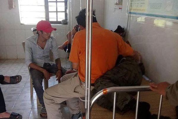 Nhiều người đi tảo mộ ở Nghệ An bị ong rừng tấn công phải cấp cứu