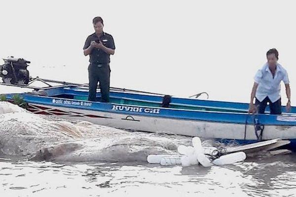 Ngư dân bóc tách xương, an vị cá voi 15 tấn