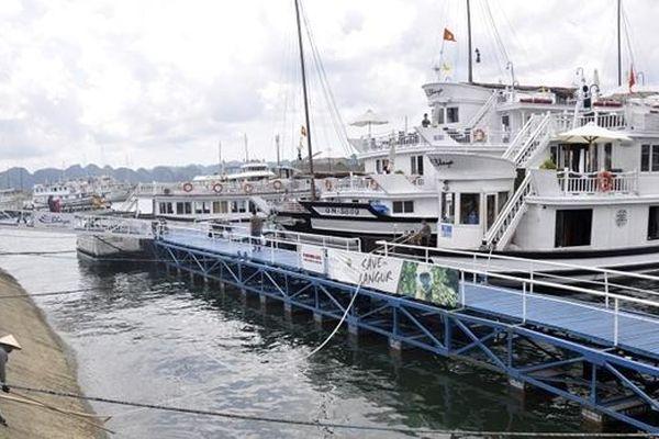 Du khách Nhật trượt chân ngã tử vong tại cảng Tuần Châu