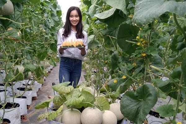 Khởi nghiệp từ nông nghiệp công nghệ cao