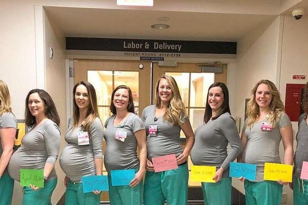 Chuyện lạ có thật: 9 'bà đỡ' cùng có thai một lúc