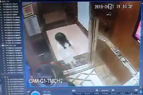 Sở TT&TT Đà Nẵng 'chưa có thông tin xác thực' vụ bé gái bị sàm sỡ