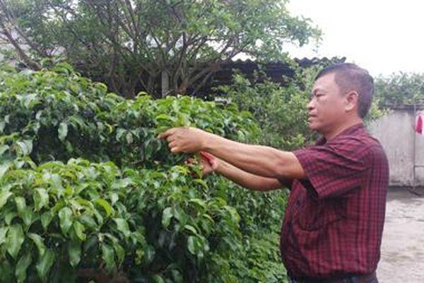 Đồng bào Công giáo Kim Sơn: Đoàn kết xây dựng đời sống văn hóa