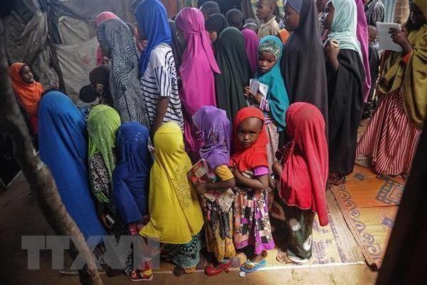 IOM giải cứu hàng chục nghìn người di cư tại Niger