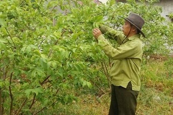 Quảng Bình: Mưa lớn chưa thể giải nhiệt khắp vùng