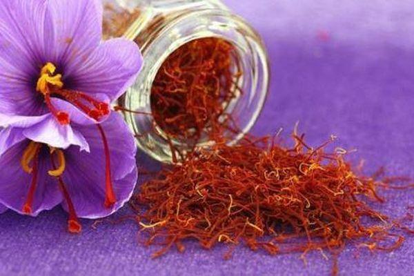 Nhụy hoa nghệ tây có phải là thần dược chữa ung thư?