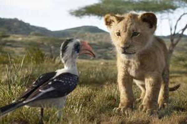 Review 'The Lion King': CGI mãn nhãn, là phiên bản live-action bám sát nguyên tác nhất của Disney từ trước đến nay
