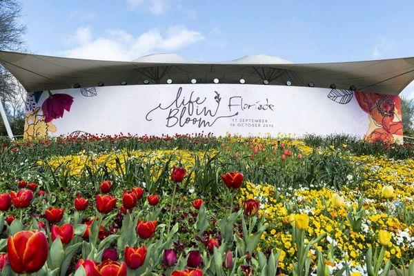 Đừng bỏ lỡ cơ hội check in lễ hội hoa lớn nhất ở Úc!