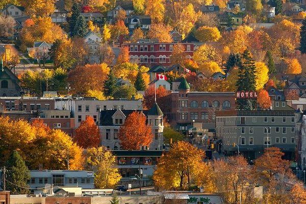 Lạc lối ở Canada mùa cây thay lá