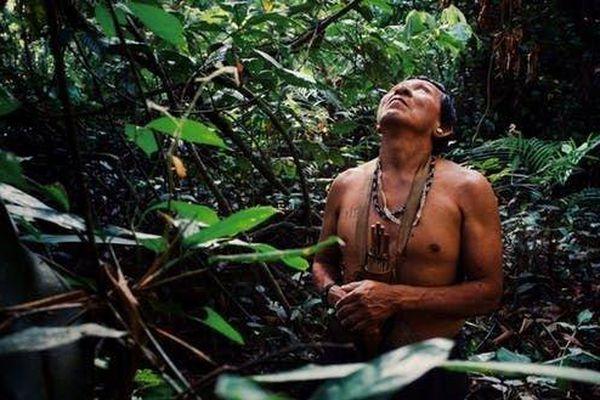 Cháy rừng hoành hành, Brazil lo bộ lạc khu vực Amazon bị xóa sổ