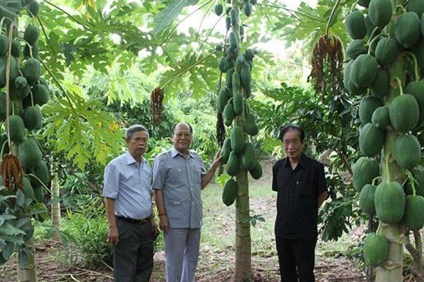 Bàn giải pháp đổi mới hoạt động Hội Làm vườn Việt Nam