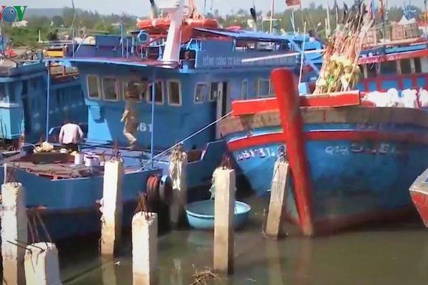 Ngư dân bất an vì luồng lạch ra vào nơi tránh trú bão bị thu hẹp