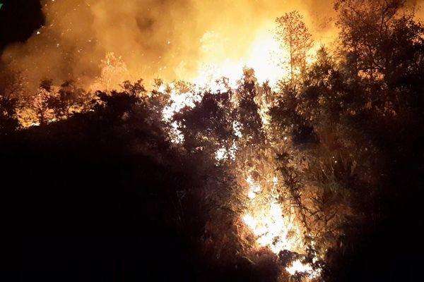 Kịp thời dập tắt vụ cháy rừng lớn tại xã Noong Luống, Điện Biên