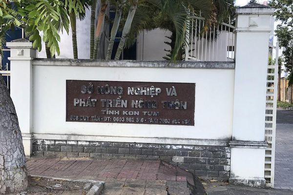 Xử lý nhiều đơn vị chủ rừng chậm nộp thuế ở Kon Tum